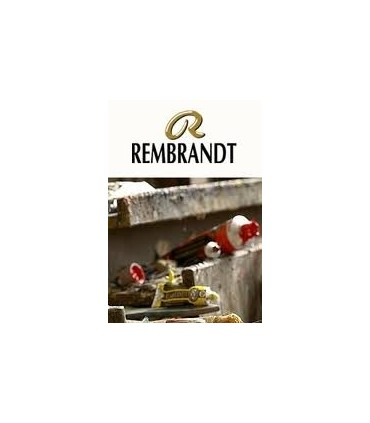 Óleo Rembrandt 15ml
