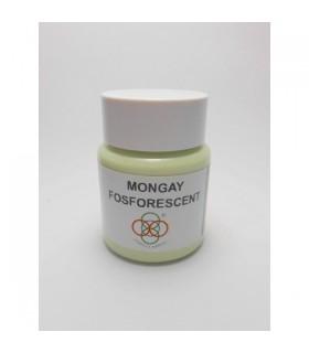 Pintura fosforescente Mongay 50ml