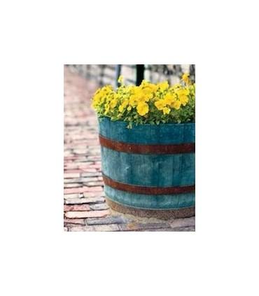 Americana Decor Color Stain 236ml