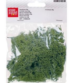 Musgo Verde 50 gr Knorr Prandell 216694420