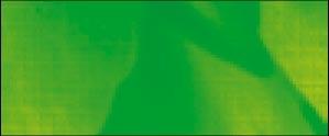 937 Verde Fluorescente