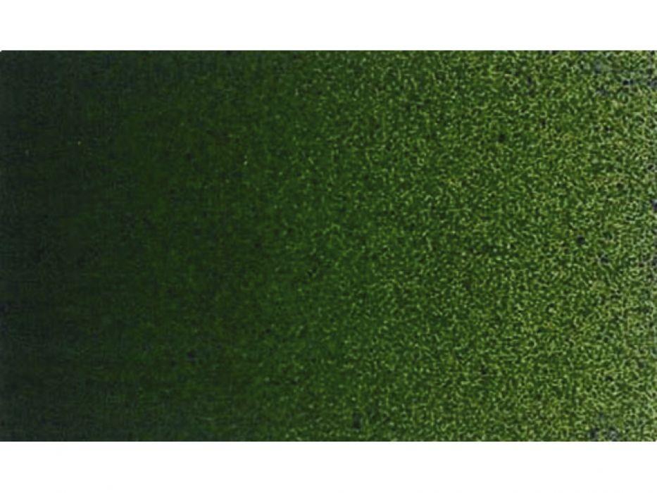 623 Verde Vejiga