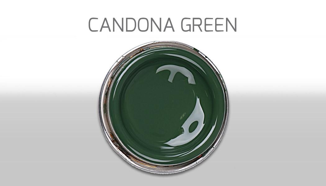 Candona verde